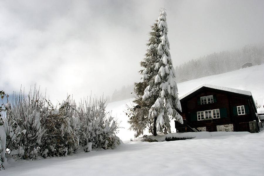 Winter_Gimmelwald_7_Copyright_Heidi_Broennimann